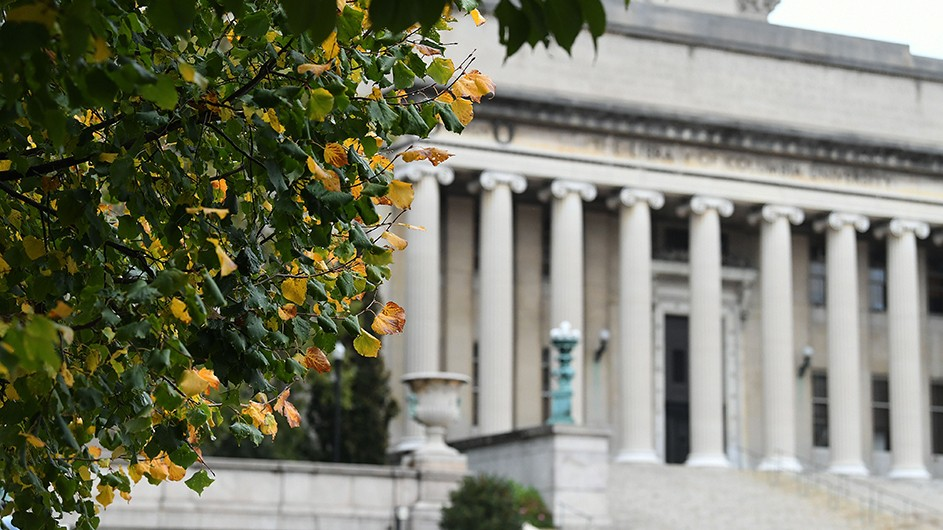 Branches covered in green and yellow leaves, against the backdrop of Low Library, a classically designed building on Columbia's Morningside campus.