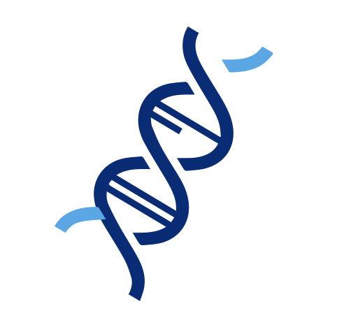 Icon of DNA strand